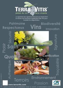 terra vitis affiche