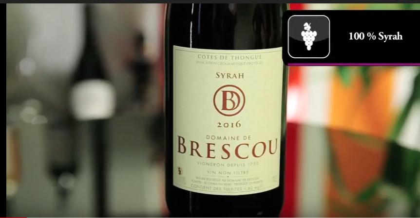 Dégustation de la cuvée Domaine de Brescou Syrah 2106 par Avenue des Vins