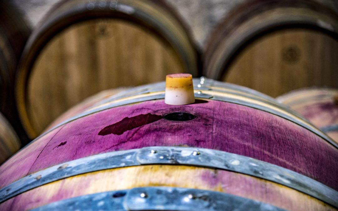 La dégustation des Vins – un travail d'équipe dans le chai à barriques