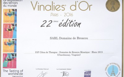 Our wine Mosaique white 2015 Gold Medal at Vinalies Internationales