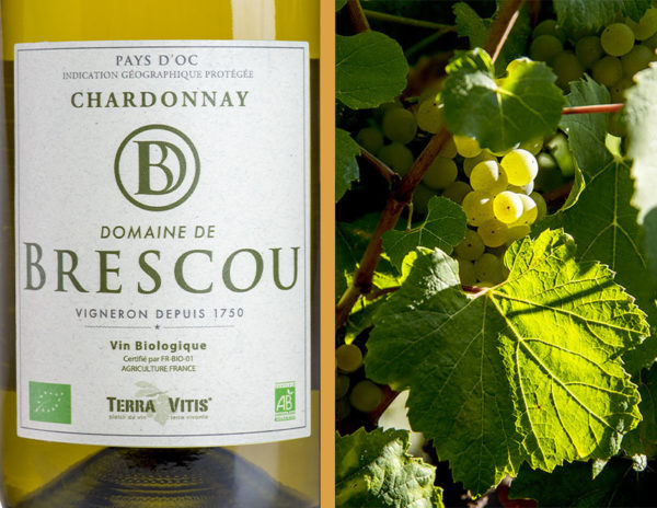 chardonnay organic wine igp pays doc