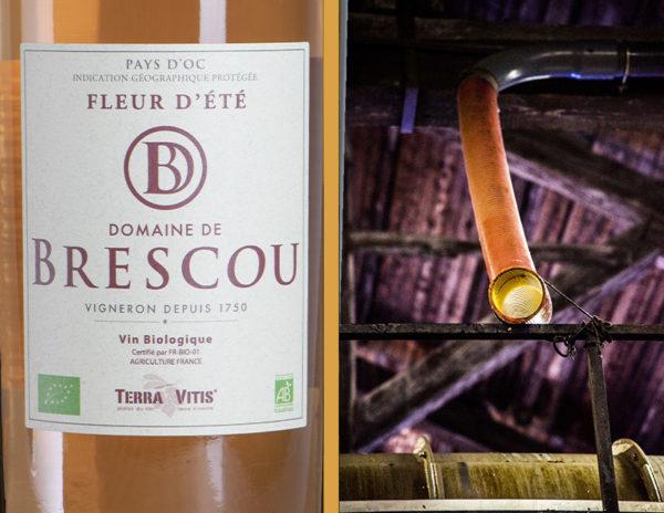 vin rosé igp pays doc bio