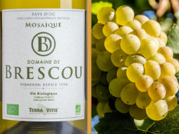 mosaique vin blanc bio pays doc