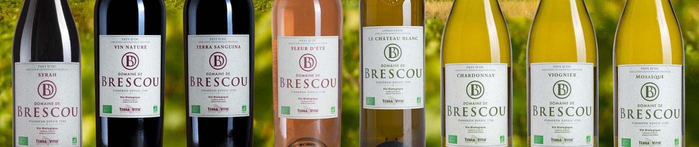 vins biologiques languedoc