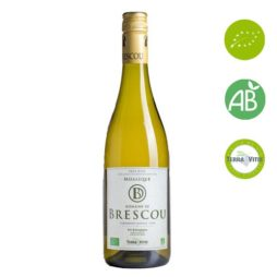 mosaique vin blanc