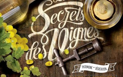 Le secret des vignes